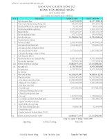 Báo cáo tài chính quý 2 năm 2009 - Công ty Cổ phần Sách và Thiết bị trường học Long An