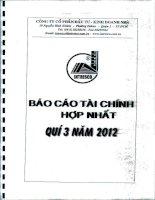 Báo cáo tài chính hợp nhất quý 3 năm 2012 - Công ty Cổ phần Đầu tư - Kinh doanh nhà