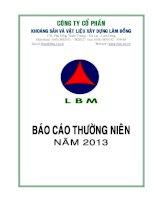 Báo cáo thường niên năm 2013 - Công ty Cổ phần Khoáng sản và Vật liệu xây dựng Lâm Đồng