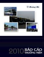 Báo cáo thường niên năm 2010 - Công ty Cổ phần Hoàng Hà