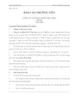 Báo cáo thường niên năm 2007 - Công ty Cổ phần Đầu tư và Xây dựng BDC Việt Nam
