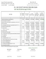 Báo cáo tài chính công ty mẹ quý 1 năm 2013 - Công ty Cổ phần Phát triển Hạ tầng Vĩnh Phúc