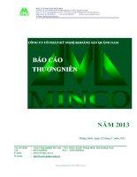 Báo cáo thường niên năm 2013 - Công ty Cổ phần Kỹ nghệ Khoáng sản Quảng Nam