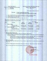 Báo cáo tài chính hợp nhất quý 1 năm 2015 - Công ty Cổ phần Khoáng sản và Vật liệu xây dựng Lâm Đồng