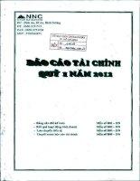Báo cáo tài chính quý 1 năm 2012 - Công ty Cổ phần Đá Núi Nhỏ
