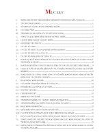 Bản cáo bạch - Công ty Cổ phần Tập đoàn Kido
