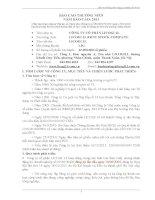 Báo cáo thường niên năm 2011 - Công ty Cổ phần Licogi 13