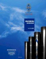 Báo cáo thường niên năm 2010 - Công ty Cổ phần Hữu Liên Á Châu