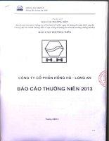 Báo cáo thường niên năm 2013 - Công ty Cổ phần Hồng Hà Long An