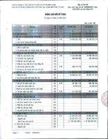 Báo cáo tài chính quý 4 năm 2012 - Công ty Cổ phần Kỹ thuật và Ô tô Trường Long