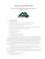 Báo cáo thường niên năm 2012 - Công ty cổ phần Kim khí miền Trung