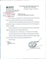 Báo cáo KQKD quý 2 năm 2013 - Công ty Cổ phần Đá Núi Nhỏ