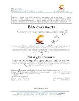Bản cáo bạch - Công ty Cổ phần Chứng khoán Kim Long