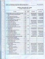 Báo cáo tài chính quý 1 năm 2010 - Công ty Cổ phần Đầu tư và Phát triển Đa Quốc Gia I.D.I