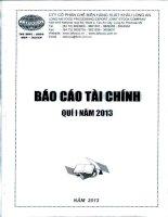 Báo cáo tài chính quý 1 năm 2013 - Công ty Cổ phần Chế biến Hàng xuất khẩu Long An