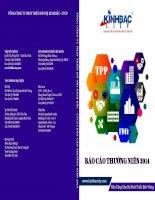 Báo cáo thường niên năm 2014 - Tổng Công ty Phát triển Đô thị Kinh Bắc-CTCP