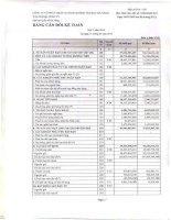 Báo cáo tài chính quý 1 năm 2014 - Công ty cổ phần Dịch vụ Hàng không Sân bay Đà Nẵng