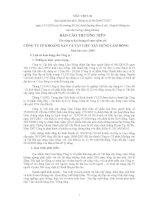 Báo cáo thường niên năm 2009 - Công ty Cổ phần Khoáng sản và Vật liệu xây dựng Lâm Đồng