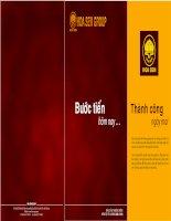 Báo cáo thường niên năm 2010 - Công ty Cổ phần Tập đoàn Hoa Sen