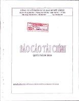 Báo cáo tài chính quý 2 năm 2010 - Công ty cổ phần In và Bao bì Mỹ Châu