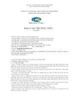 Báo cáo thường niên năm 2008 - Công ty Cổ phần Tập đoàn Thủy sản Minh Phú