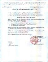 Nghị quyết Hội đồng Quản trị - Công ty Cổ phần Đầu tư Địa ốc Khang An
