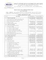Báo cáo tài chính quý 2 năm 2007 - Công ty Cổ phần Hợp tác Lao động với Nước ngoài