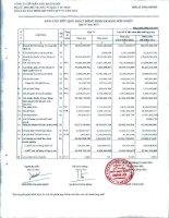 Báo cáo tài chính hợp nhất quý 4 năm 2010 - Công ty Cổ phần Đầu tư và Dịch vụ Khánh Hội