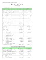 Báo cáo tài chính quý 2 năm 2009 - Công ty Cổ phần Someco Sông Đà