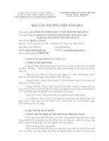 Báo cáo thường niên năm 2012 - Công ty cổ phần Đầu tư Xây dựng Dầu khí IDICO