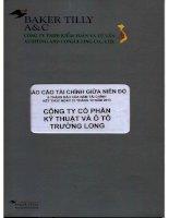 Báo cáo tài chính quý 2 năm 2013 (đã soát xét) - Công ty Cổ phần Kỹ thuật và Ô tô Trường Long