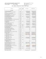 Báo cáo tài chính công ty mẹ quý 2 năm 2011 - Công ty Cổ phần Tập đoàn Mai Linh Miền Trung