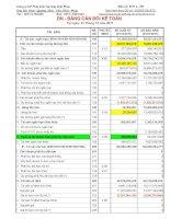 Báo cáo tài chính công ty mẹ năm 2011 (đã kiểm toán) - Công ty Cổ phần Phát triển Hạ tầng Vĩnh Phúc