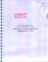 Báo cáo tài chính hợp nhất quý 4 năm 2009 - Tổng Công ty Phát triển Đô thị Kinh Bắc-CTCP