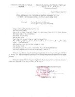 Báo cáo tài chính hợp nhất quý 2 năm 2013 - Công ty Cổ phần Tập đoàn MaSan