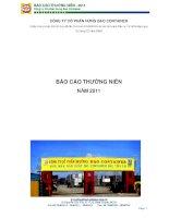 Báo cáo thường niên năm 2010 - Công ty Cổ phần Hưng Đạo Container