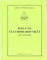 Báo cáo tài chính hợp nhất quý 2 năm 2014 - Công ty cổ phần LICOGI 16