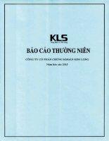 Báo cáo thường niên năm 2015 - Công ty Cổ phần Chứng khoán Kim Long