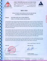 Báo cáo tài chính quý 2 năm 2010 (đã soát xét) - Công ty Cổ phần Khoáng sản Hòa Bình
