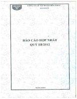 Báo cáo tài chính hợp nhất quý 3 năm 2012 - Công ty cổ phần Tập đoàn Hòa Phát
