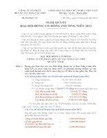 Nghị quyết Hội đồng Quản trị - Công ty Cổ phần Bến xe Tàu phà Cần Thơ