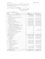 Báo cáo tài chính quý 3 năm 2007 - Công ty Cổ phần Đầu tư và Xây dựng BDC Việt Nam