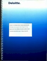 Báo cáo tài chính năm 2014 (đã kiểm toán) - Công ty Cổ phần Dược phẩm IMEXPHARM