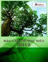 Báo cáo thường niên năm 2012 - Công ty Cổ phần Phát triển Hạ tầng Kỹ thuật