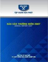 Báo cáo thường niên năm 2007 - Công ty cổ phần Tập đoàn Hòa Phát