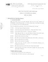 Báo cáo thường niên năm 2010 - Công ty Cổ phần Hải Minh