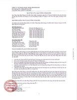 Báo cáo tài chính quý 2 năm 2013 (đã soát xét) - Công ty Cổ phần Dược phẩm IMEXPHARM