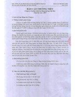Báo cáo thường niên năm 2009 - CTCP Suất ăn Hàng không Nội Bài