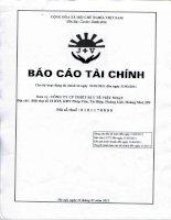Báo cáo tài chính quý 1 năm 2011 - Công ty cổ phần Thiết bị Y tế Việt Nhật