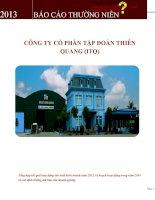 Báo cáo thường niên năm 2013 - Công ty cổ phần Tập đoàn Thiên Quang